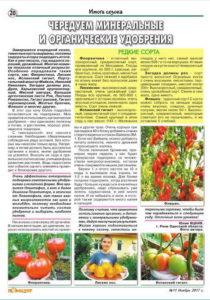 """Оригинал статьи в журнале """"Сеньер Помидор"""""""
